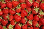 Erdbeerrezepte